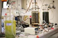 inra-institut-recherche-agronomique-science-narbonne-10