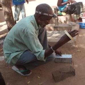 Piégeage rongeurs invasifs Sénégal