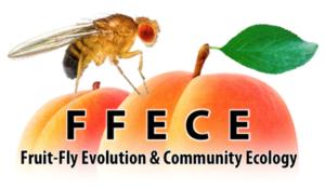 FFECE-2018