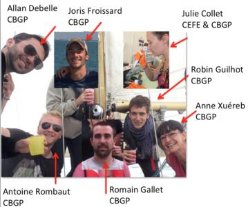 Group members (October 2018)