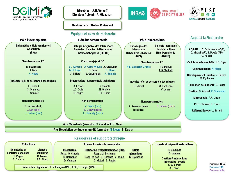 Organigramme DGIMI 2021