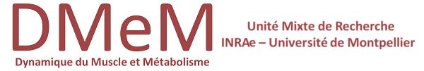 Logo DMEM