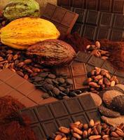 chocolat-FM-INRAnational