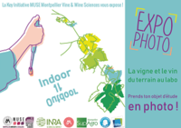 Expo photo_web
