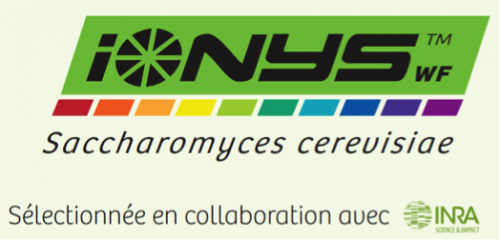 Innovation 2016: Levure IONYS
