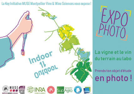 [Actu] Août 2019. KIM Vine&Wine Expo photos