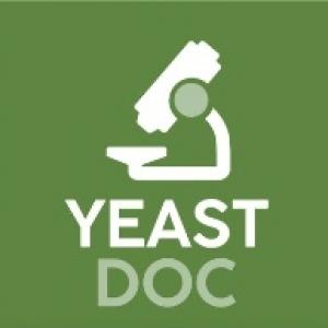 Projet Yeastdoc