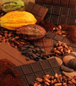 Photo de couverture du livre de Michel Barel Du Cacao au Chocolat, l'épopée d'une gourmandise, publié aux Editions Quae.. © Inra, WEBER Jean