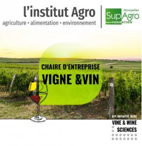 [Actu 2021] Création d'une Chaire d'entreprises Vigne et Vin