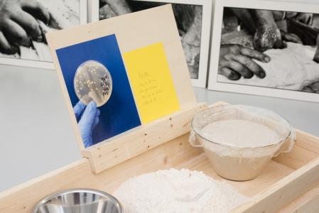 [Actu] 2021 Domestication de la levure pour faire du pain